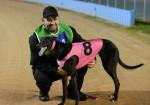 Australia's best sprinter Zambora Brockie will be the headline act when Speed Star hits Sandown on Thursday night.